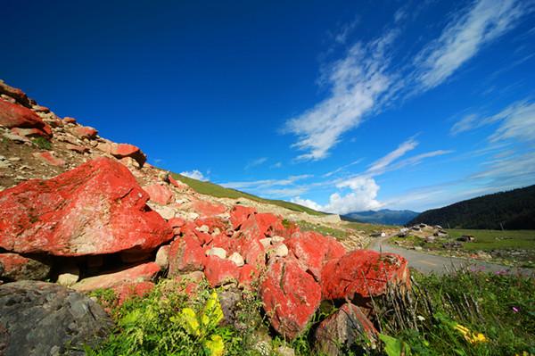 海螺沟雅加埂红石滩 (1).JPG