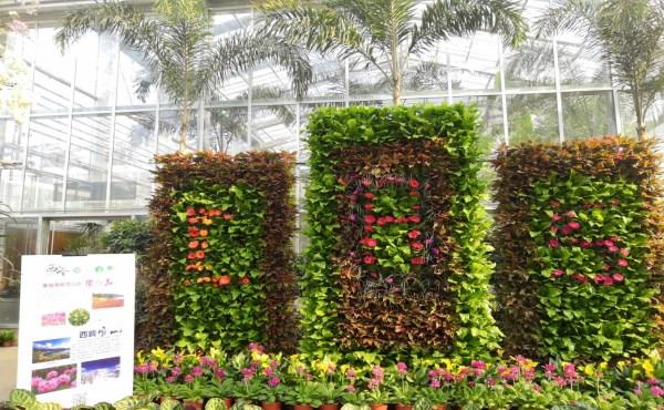 植物园1.jpg