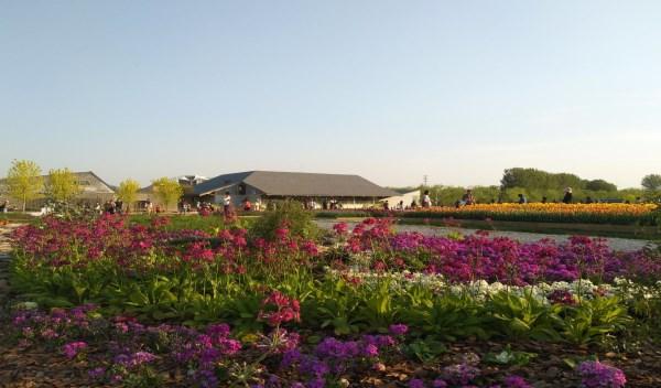 植物园2.jpg