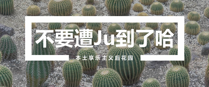 享乐主义后花园 | 十块钱就能去墨西哥?在这个新晋网红胜地,我们找到了答案